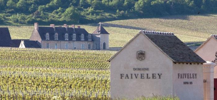 Domaine Faiveley nel mercato del vino pregiato