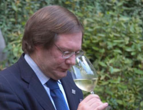 II miglior vino italiano 2020 secondo Terroir Sense
